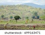 farming fields   tanzania   Shutterstock . vector #699163471