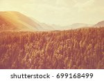 Landscape With Forest. High Fi...