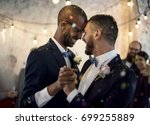 closeup of newlywed gay couple... | Shutterstock . vector #699255889