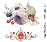 watercolor floral and figs set. ... | Shutterstock . vector #699335047