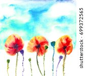 three orange red poppies with... | Shutterstock . vector #699372565