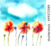 three orange red poppies with... | Shutterstock . vector #699372589