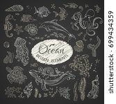 vector set of chalk wild... | Shutterstock .eps vector #699434359