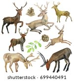 deer silhouette watercolor set. ... | Shutterstock . vector #699440491
