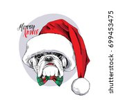 christmas card. portrait of a... | Shutterstock .eps vector #699453475