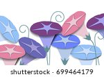 colorful morning glory flowers... | Shutterstock .eps vector #699464179