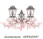 elegant vintage style street... | Shutterstock . vector #699535597