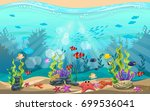 the beauty of underwater life... | Shutterstock .eps vector #699536041