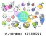 fruits   hand drawn vector set. ... | Shutterstock .eps vector #699555091