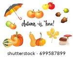 set of autumn objects. pumpkins ... | Shutterstock .eps vector #699587899