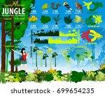 vector tropical rainforest... | Shutterstock .eps vector #699654235