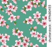 japanese cherry flowers blossom ... | Shutterstock .eps vector #699680455