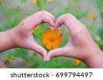 orange flowers with heart... | Shutterstock . vector #699794497