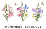 collection watercolor flowers.... | Shutterstock . vector #699807121