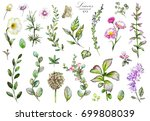 big set watercolor elements  ... | Shutterstock . vector #699808039