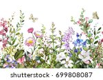 seamless rim. border with herbs ... | Shutterstock . vector #699808087