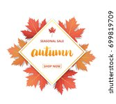 autumn sale . autumn seasonal... | Shutterstock .eps vector #699819709