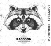 hipster animal raccoon. hand... | Shutterstock .eps vector #699822979