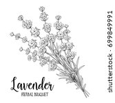 bouquet of lavender on a white... | Shutterstock .eps vector #699849991