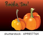 two orange pumpkin on deep red... | Shutterstock .eps vector #699857764