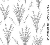seamless pattern of lavender... | Shutterstock .eps vector #699864769