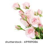 Stock photo fresh pink roses border isolated on white background 69989086