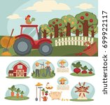 farm with big orchard  red... | Shutterstock .eps vector #699922117