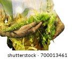 farmer concept image. double... | Shutterstock . vector #700013461