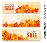 set of three autumn sale... | Shutterstock .eps vector #700049179