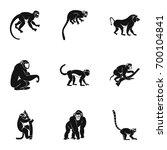 species of monkey icon set.... | Shutterstock .eps vector #700104841