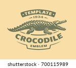 Crocodile Logo   Vector...