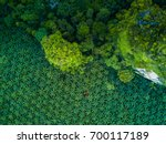 top view aerial shot of the... | Shutterstock . vector #700117189