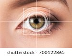 eye monitoring virtual reality.   Shutterstock . vector #700122865