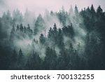 misty landscape with fir forest ... | Shutterstock . vector #700132255