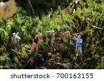 workers miniature in nature | Shutterstock . vector #700163155