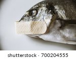 Small photo of A dead fish, silenced with a patch on its mouth. Symbolic close-up shot: mute as a, censorship, privacy.