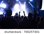 concert visitors  festival