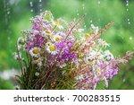 summer bouquet flowers outdoor | Shutterstock . vector #700283515