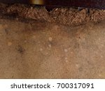 fiberboard structure of an old... | Shutterstock . vector #700317091