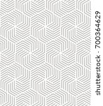 vector seamless pattern. modern ... | Shutterstock .eps vector #700364629