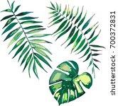 beautiful green tropical cute... | Shutterstock .eps vector #700372831