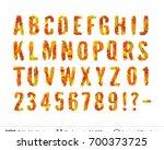 autumn fall bright symbols... | Shutterstock .eps vector #700373725