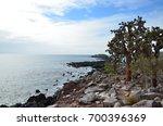 the shoreline of santa fe...   Shutterstock . vector #700396369