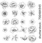 flower set | Shutterstock .eps vector #700484545