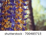 Stock photo thousands of origami paper cranes on a string decorated in the gokoku jinja shinto shrine in 700485715