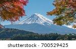 colorful autumn in mount fuji ... | Shutterstock . vector #700529425