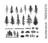 vector collection of pines ... | Shutterstock .eps vector #700545274