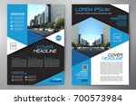 business brochure. flyer design.... | Shutterstock .eps vector #700573984