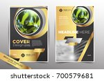 gold edition of brochure cover  ... | Shutterstock .eps vector #700579681