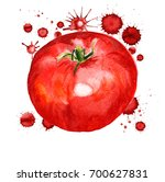 watercolor image of red tomato... | Shutterstock . vector #700627831
